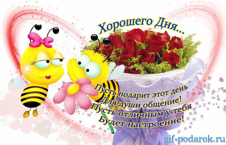 Друзьям, открытки добрый день красивые с пожеланиями